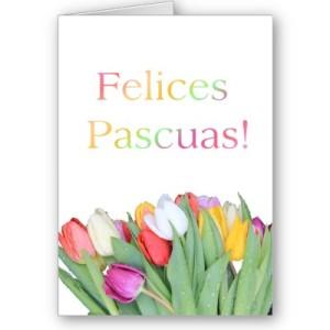 spanish_easter_card_felices_pascuas_tulip_bouq-p137918214045112998bh2r3_400